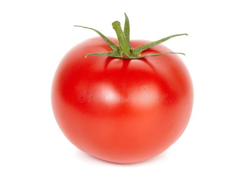 Rijpe tomaat. royalty-vrije stock afbeeldingen