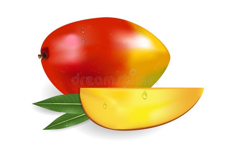 Rijpe verse mango met plakken, bladeren en dalingen Fruit 3d illustratie vector illustratie
