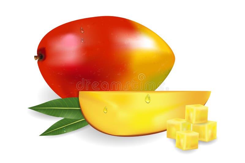 Rijpe verse mango met plakken, stukken, bladeren en dalingen Fruit 3d illustratie royalty-vrije illustratie