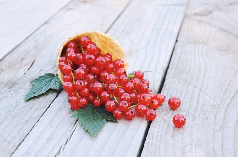 Rijpe verse rode aalbessen in de kegel van de roomijswafel op rustieke houten achtergrond stock fotografie