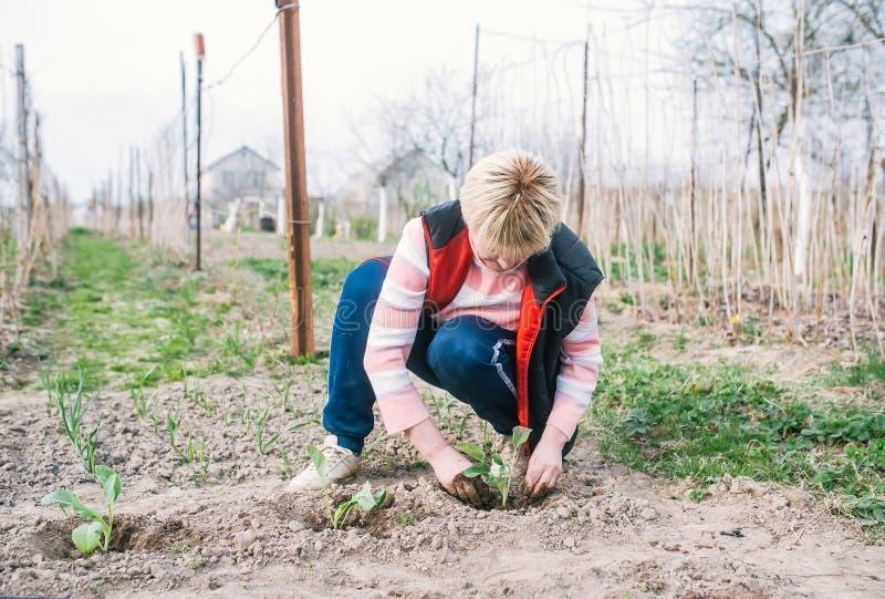 Rijpe vrouw die in de tuin werken stock afbeeldingen