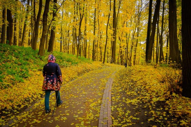 Rijpe vrouw die Noordse Gang in een park lopen royalty-vrije stock foto