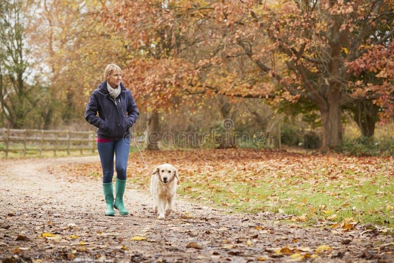 Rijpe Vrouw op Autumn Walk With Labrador royalty-vrije stock foto's