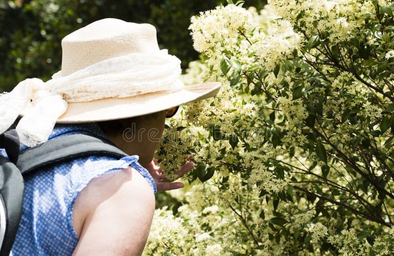 Rijpe vrouwen ruikende bloemen stock foto's