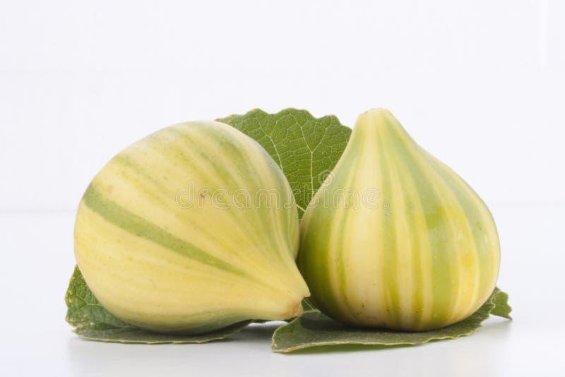 Rijpe vruchten van fig. stock foto