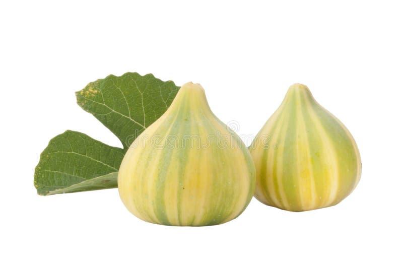 Rijpe vruchten van fig. royalty-vrije stock fotografie