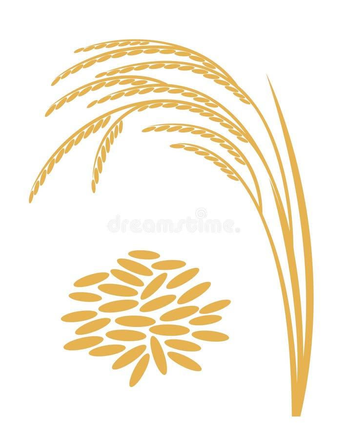 Rijst Bovengenoemde bak vector illustratie