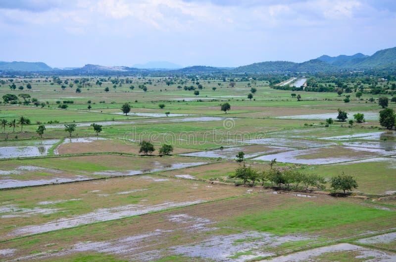Rijst ingediend landschap hierboven wordt gezien dat van; kanchanaburi Thailand stock foto