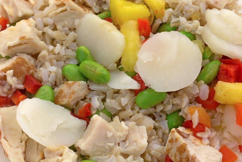 Rijst met kip en groenten stock afbeelding