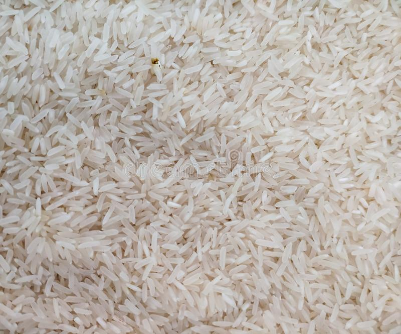 Rijst, partijen rijstzaden voordat ze worden gekookt stock foto's
