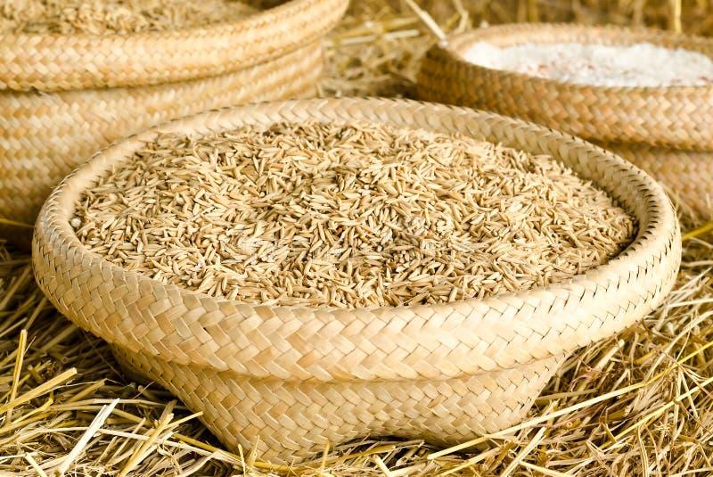 Rijstkorrel in mand stock afbeeldingen