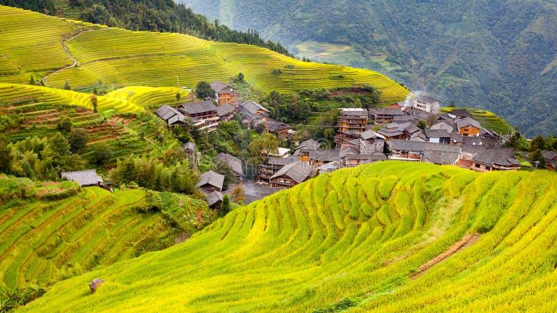 Rijstterras in Longshen Guilin China stock foto