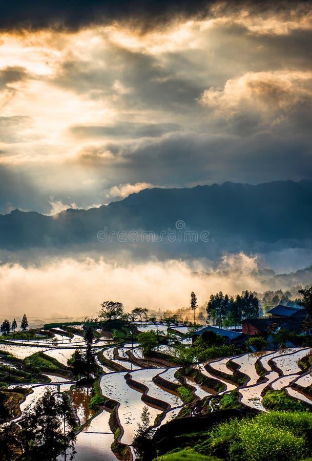 Rijstterrassen en kleurrijke wolken stock fotografie