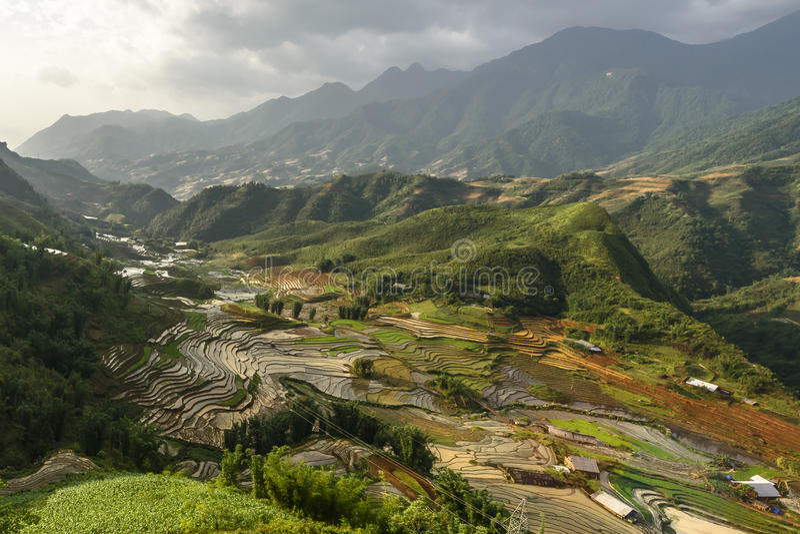 Rijstterrassen in sapadistrict, Lao Cai Province, Noordwesten Viet stock foto