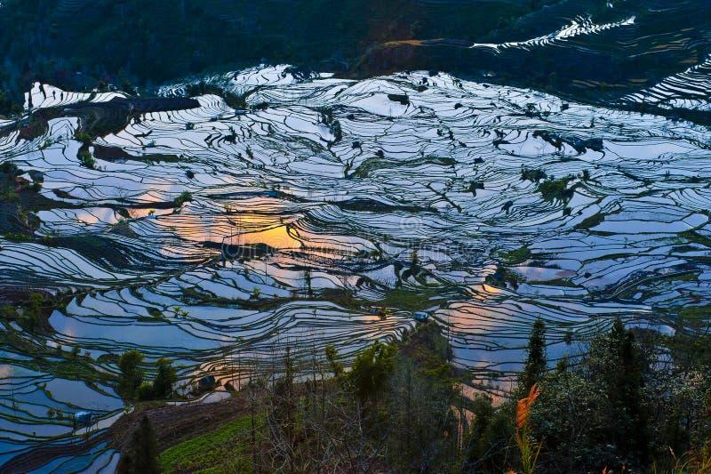 Rijstterrassen van yuanyang stock afbeeldingen