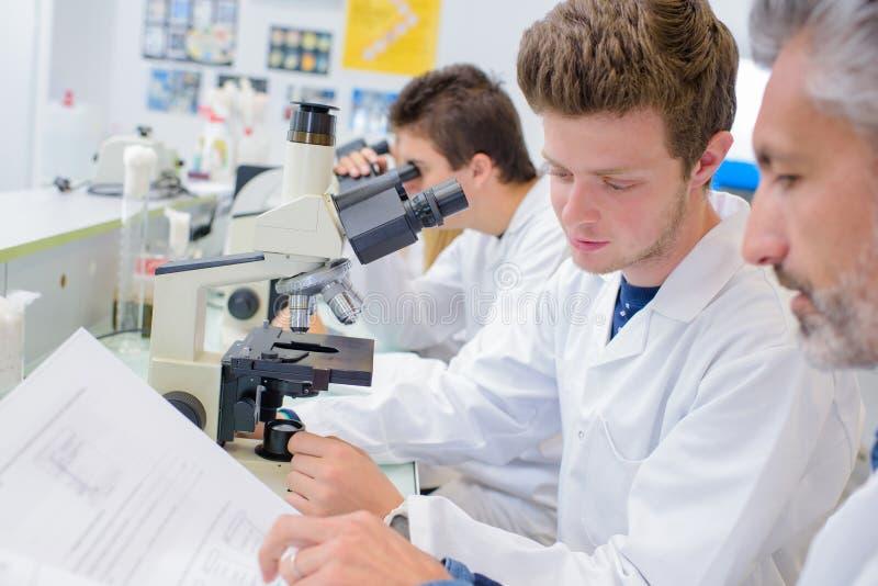 Rijstudenten in wetenschapsles royalty-vrije stock foto