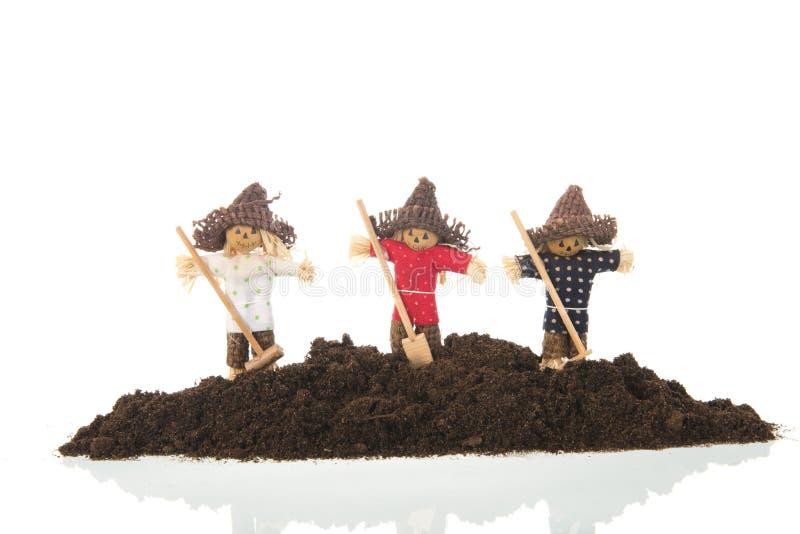 Rijvogelverschrikkers in ge?soleerd zand royalty-vrije stock fotografie