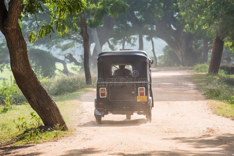 Rikshaw в плантациях поля чая, Шри-Ланка стоковые изображения