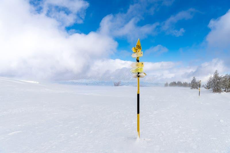 Riktningsteckenstolpen i snö täckte det Vitosha berget, Bulgarien royaltyfria bilder