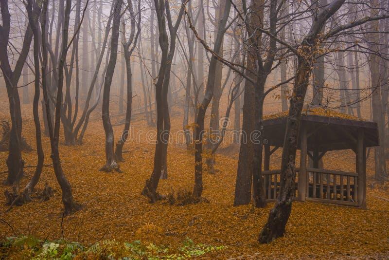 Rilaberg in de herfst stock afbeeldingen