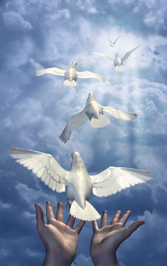 Rilascio delle colombe royalty illustrazione gratis