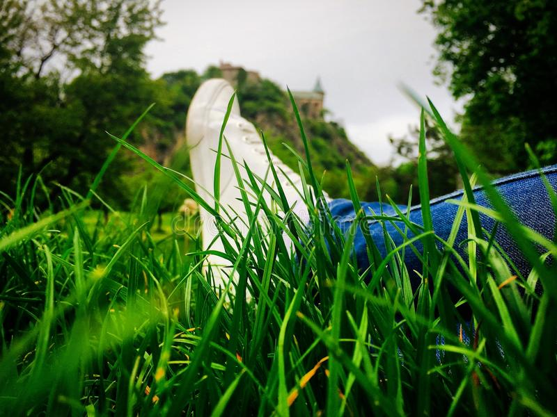 Rilassamento nell'erba fotografia stock