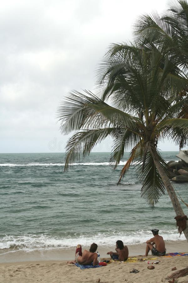 Rilassandosi alla spiaggia. Amaca fotografia stock