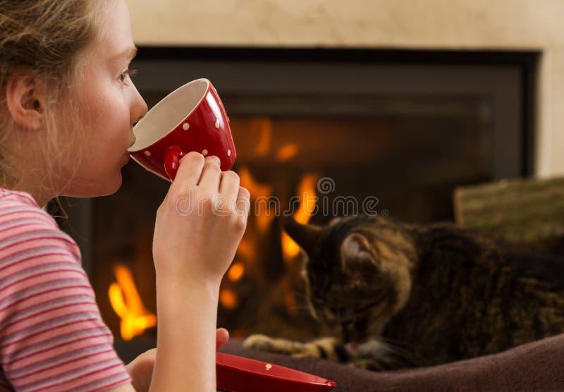 Rilassandosi dal camino con la bevanda ed il gatto fotografia stock libera da diritti