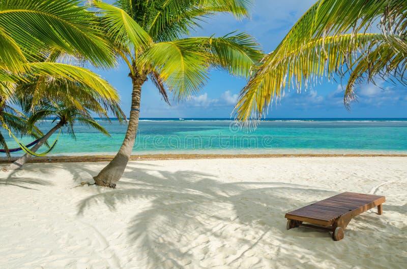 Rilassandosi sulla sedia - Belize Cayes - piccola isola tropicale alla barriera corallina con la spiaggia di paradiso - conosciut fotografia stock