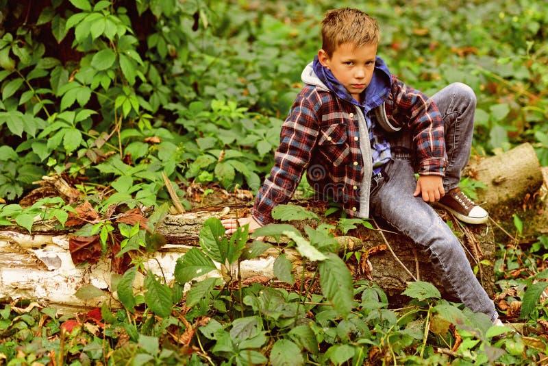 Rilassato e pacifico Il ragazzino si rilassa la seduta sull'albero Il ragazzino si rilassa in legno Rilassi, vita è bello fotografie stock