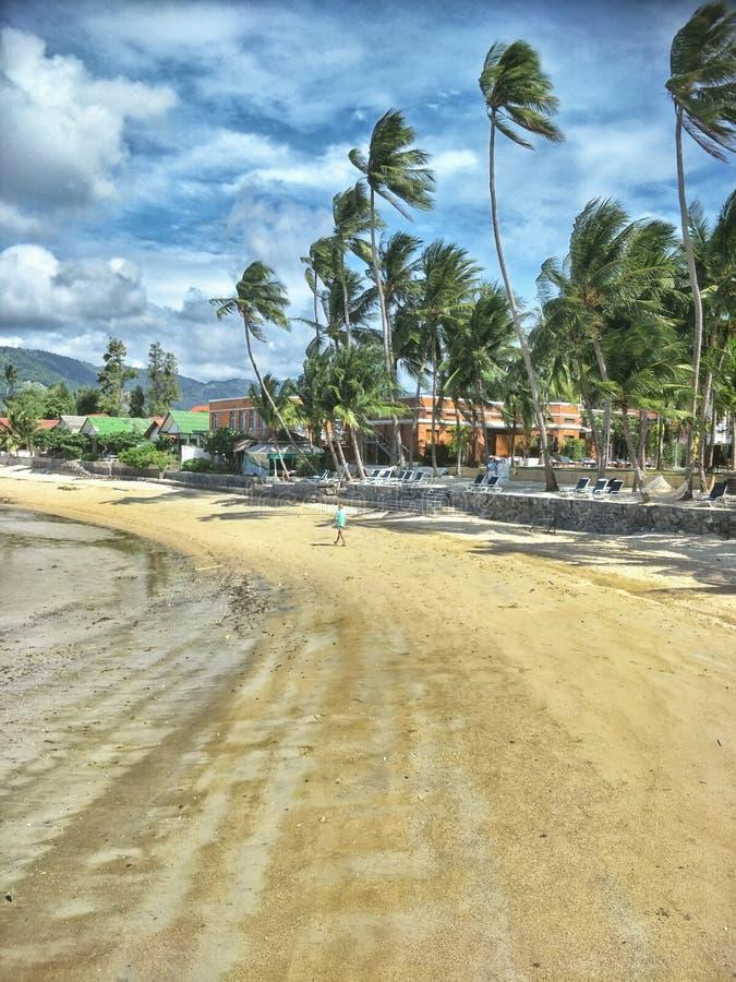 Rilassi all'isola di samui fotografia stock libera da diritti