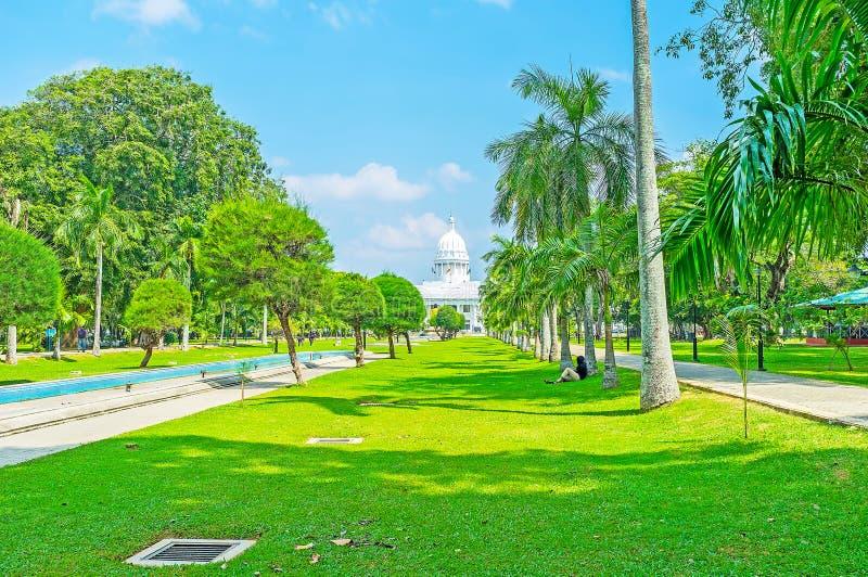 Rilassi nel parco di Viharamahadevi di Colombo fotografia stock libera da diritti