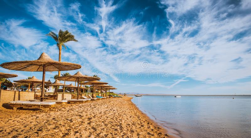 Rilassi sotto il parasole sulla spiaggia del Mar Rosso Egitto fotografia stock libera da diritti