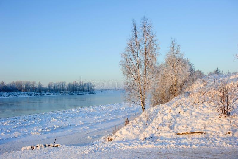 Rime en las ramas en invierno en un bosque cerca de un río congelado foto de archivo