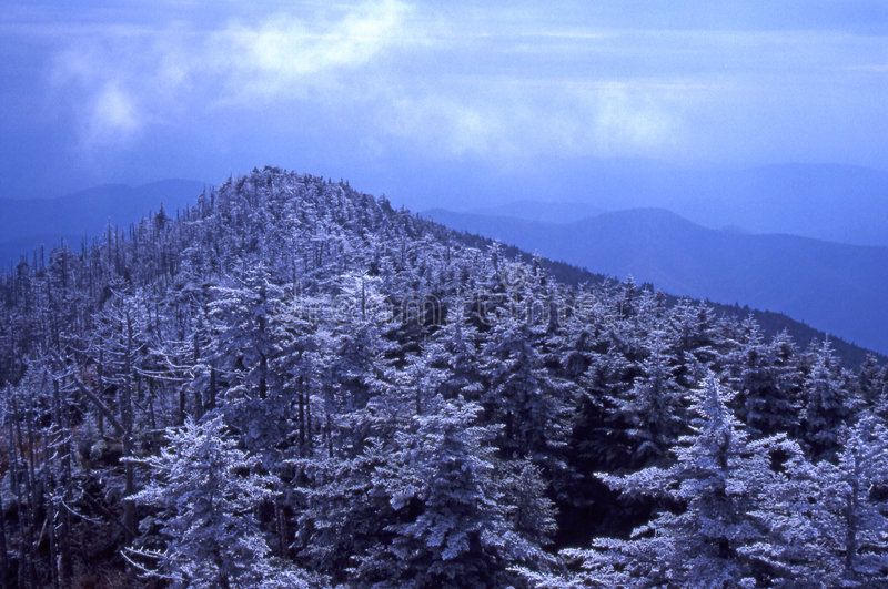 Download Rime Ice on Mt. Mitchell stock photo. Image of ridge, parkway - 2874098