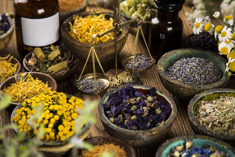 Rimedio naturale,Medicina vegetale e sfondo di legno fotografie stock libere da diritti