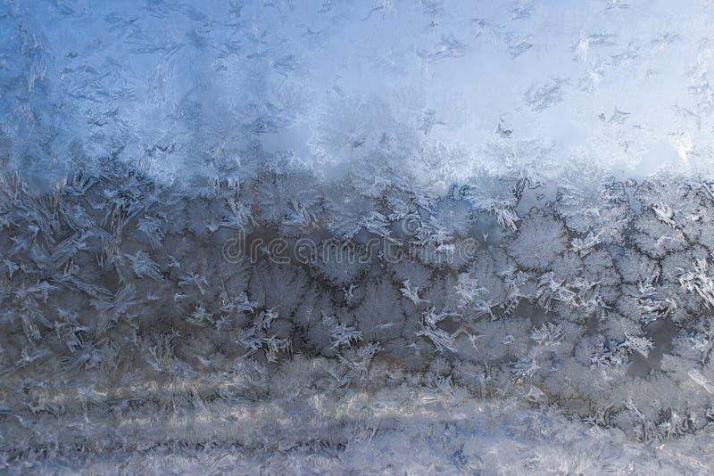 Rimfrost och modeller av snöflingorna royaltyfri bild