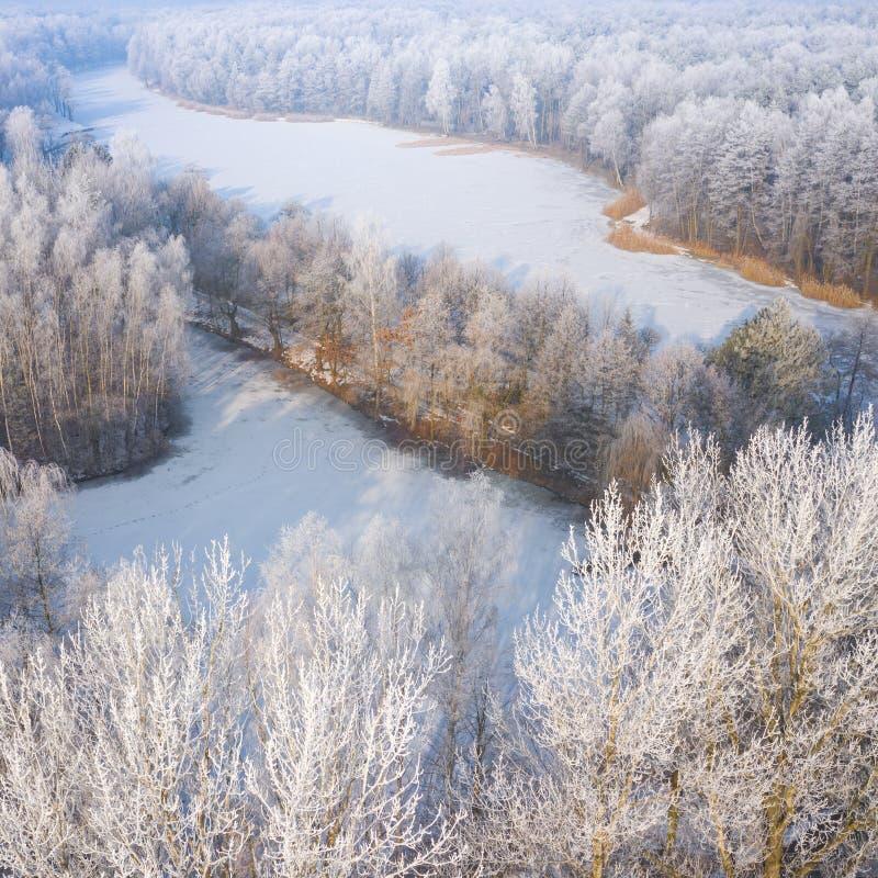 Rimfrost- och rimfrostbeläggningträd Flyg- sikt av dentäckte skogen och sjön från över svart blått footwayfotolandskap tonade vit royaltyfri foto