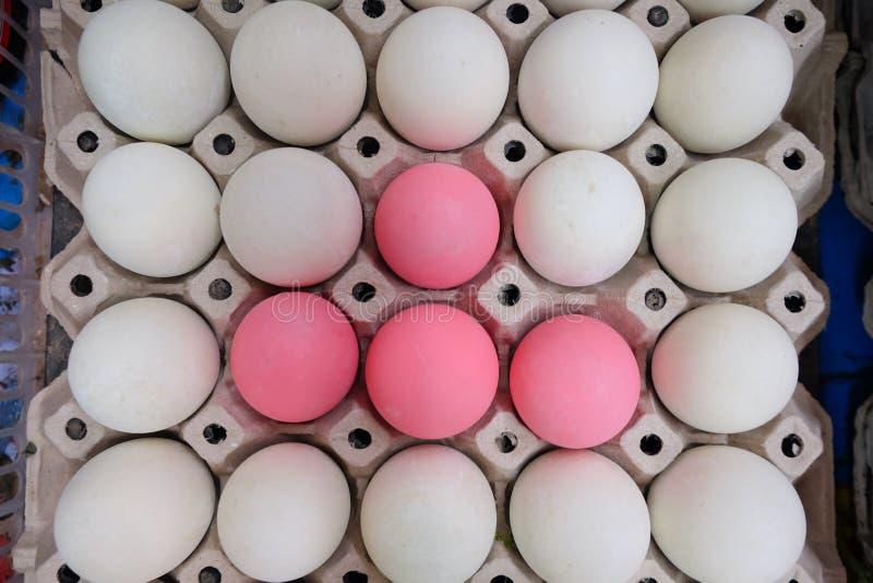 Rimmade ägg för vita ägg och rosa ägg arkivfoto