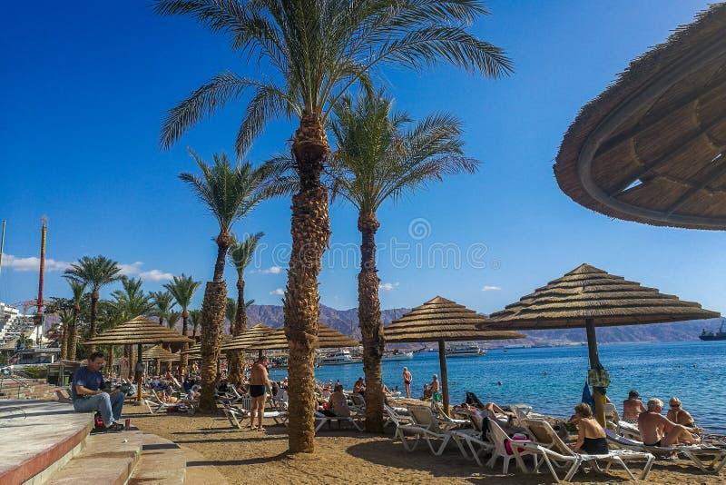 Rimonim strand Eilat royaltyfria bilder