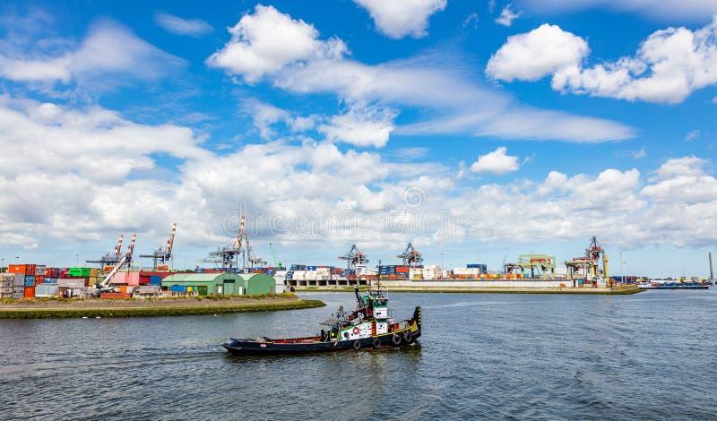 Rimorchiatore al porto di Rotterdam, Paesi Bassi Affare di logistica, scarico di caricamento del carico fotografia stock libera da diritti