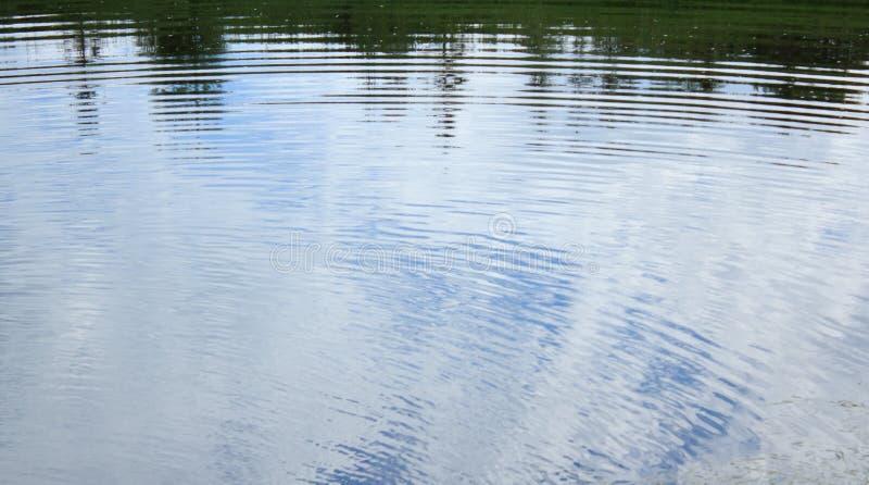 Rimpelingen op water stock afbeelding