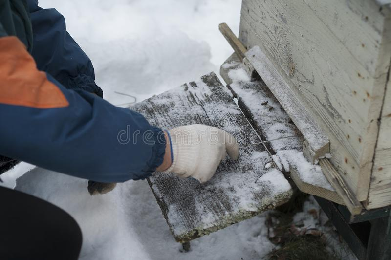 Rimuovendo neve dall'alveare immagini stock libere da diritti