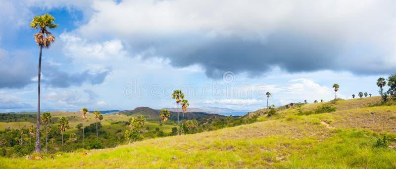 Rinca Panorama Stock Image