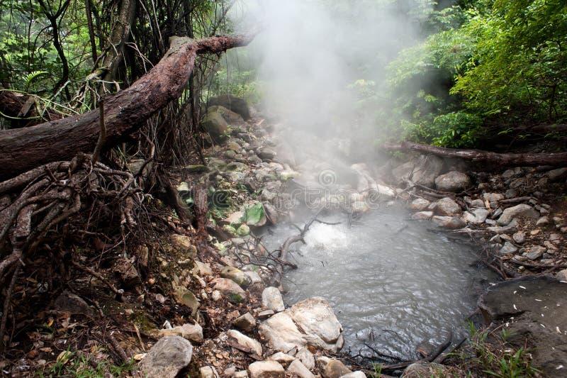 Rincon de la Vieja nationalpark royaltyfria foton