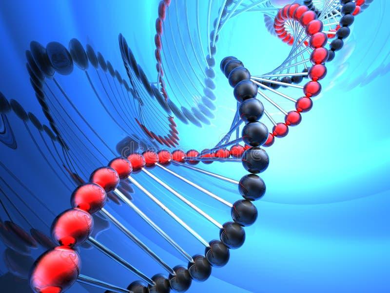 Rinda de la DNA imagenes de archivo