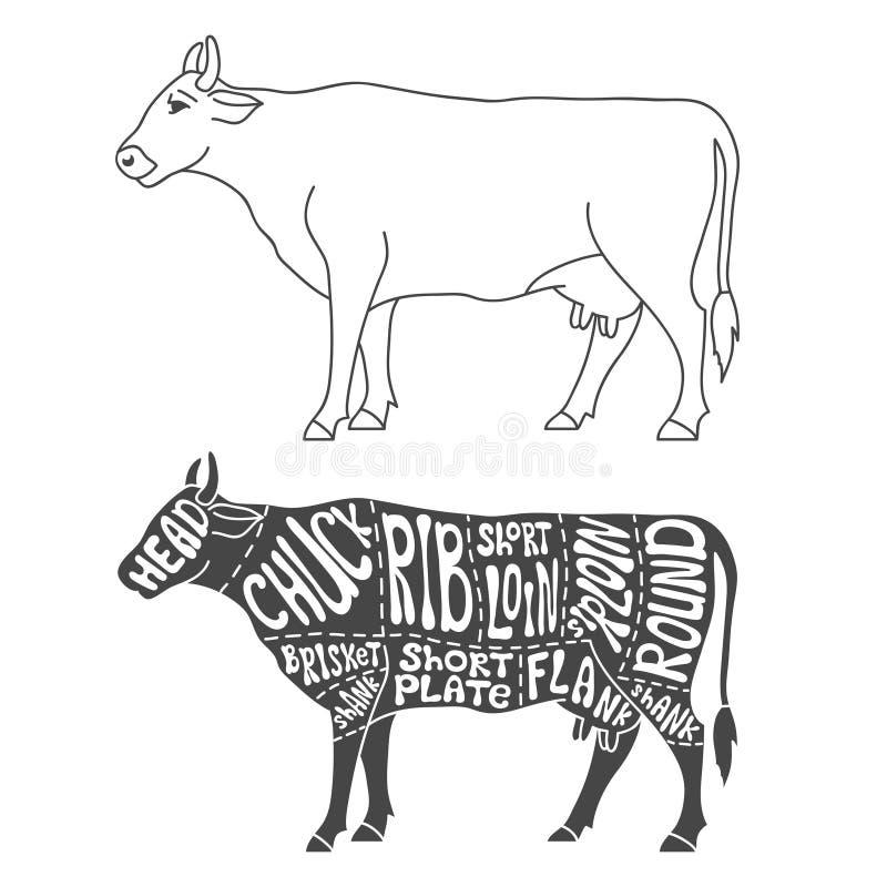 Rindfleisch Schneidet Diagramm Vektor Abbildung - Illustration von ...