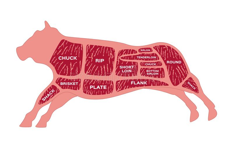 Rindfleischstück Metzgerdiagramm Kuh lizenzfreie abbildung