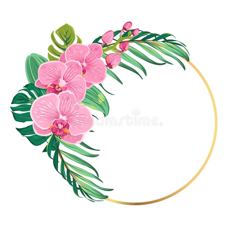 Ring border frame orchid flowers tropical leaves. Round circle ring border frame decorated with exotic pink orchid phalaenopsis flowers and tropical green jungle stock illustration