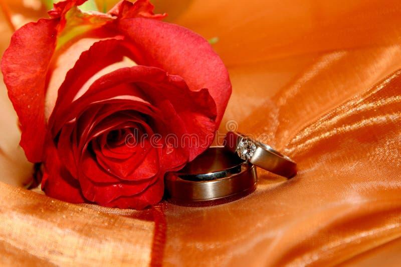 Ring-Organza stockbild